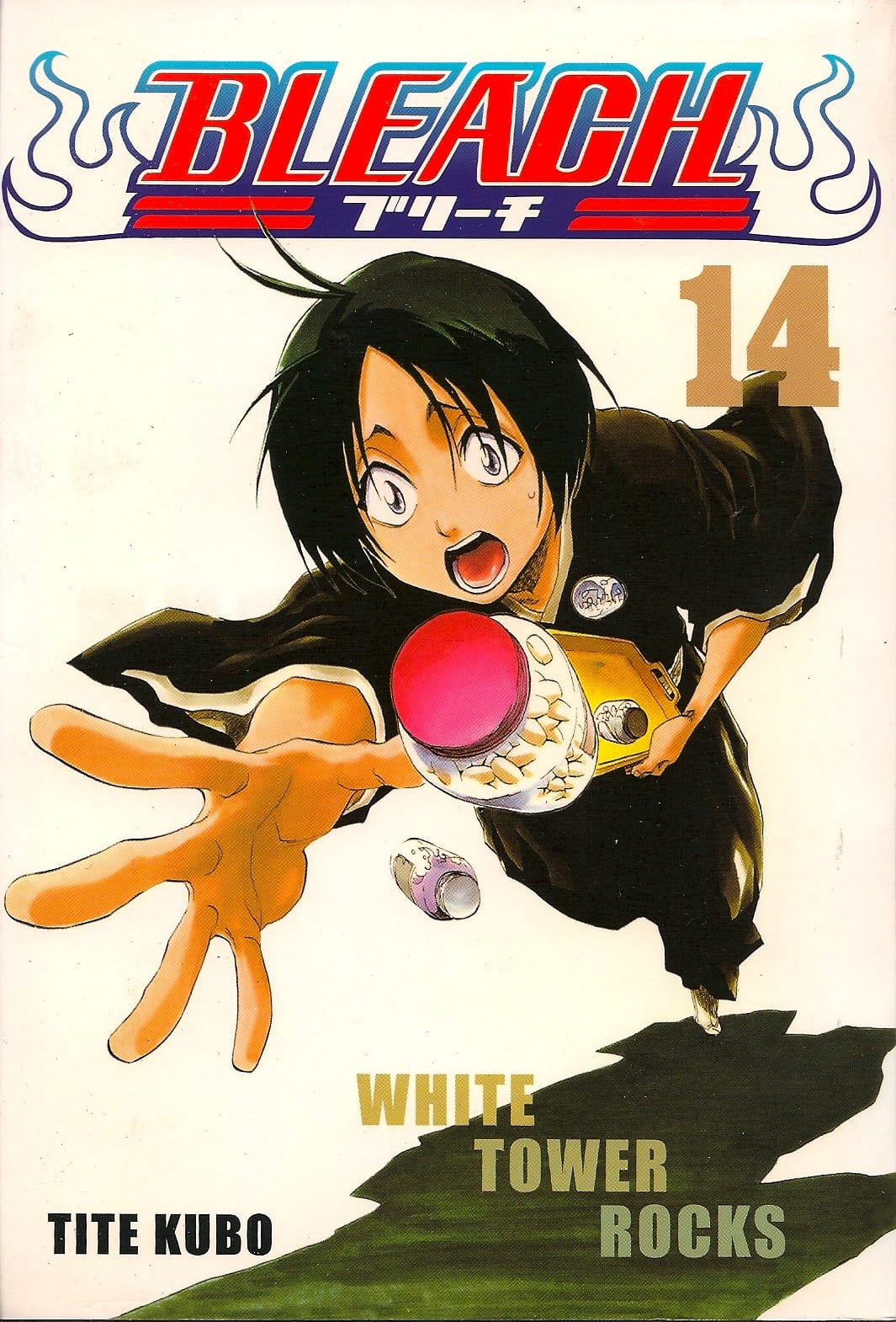 Capa: Bleach 14