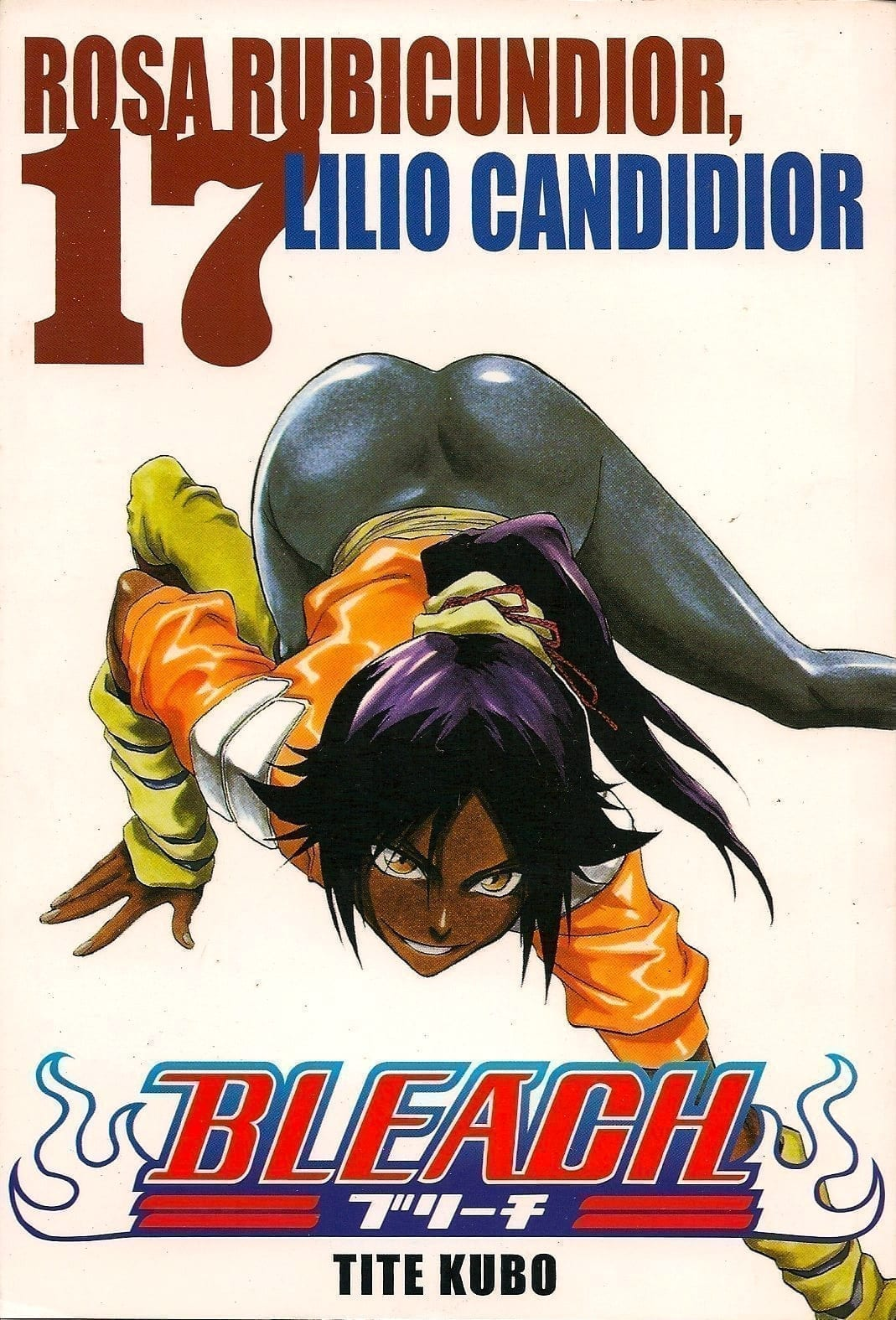 Capa: Bleach 17